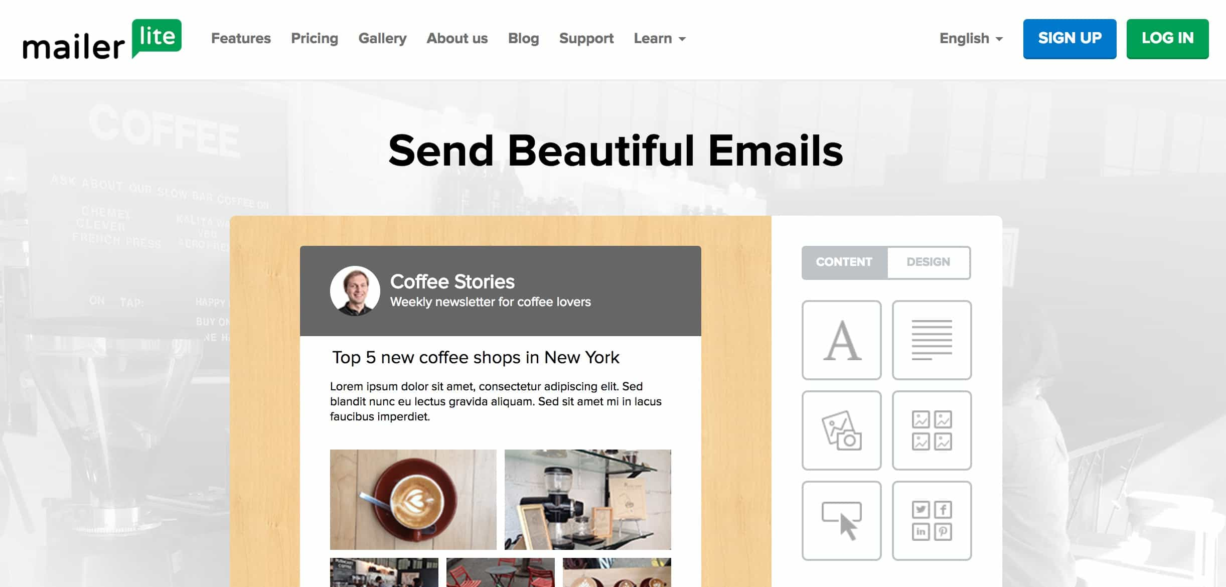 MailerLite is a great free email newsletter service